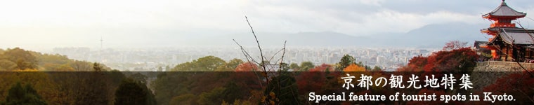 京都の観光地特集! Special features of tourist spots in Kyoto!
