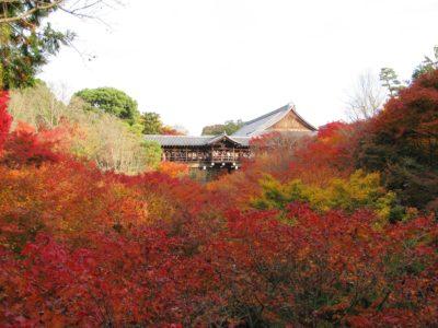 東福寺13