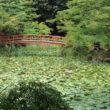大原野神社5