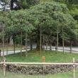 大原野神社18