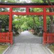 大原野神社29