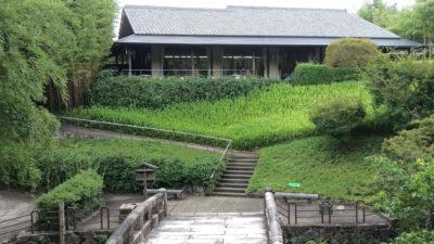 京都市洛西竹林公園6