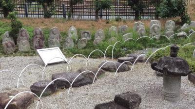 京都市洛西竹林公園11