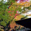 大徳寺 高桐院20