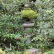 大徳寺 高桐院28