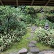 大徳寺 高桐院29