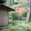 大徳寺 高桐院34