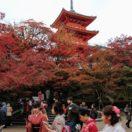 清水寺 Kiyomizu Temple