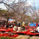 円山公園 Maruyama park