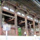 仁和寺 Ninna Temple