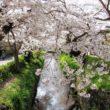松ヶ崎疏水4
