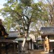 護王神社17