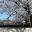 醍醐寺56