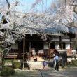 醍醐寺58