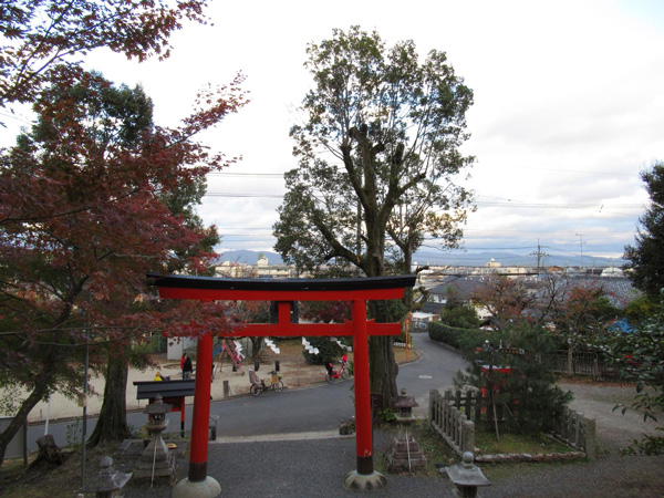 境内からの市街の眺め