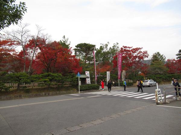 大覚寺門前の写真
