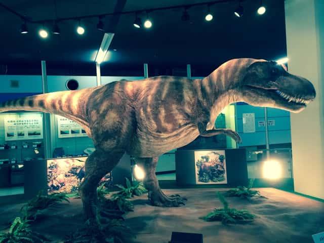 恐竜の実物大模型