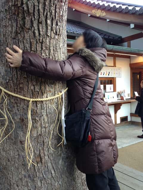 ご神木につかまる女性